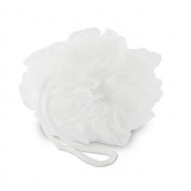 Fleur de douche blanche - Lot de 18