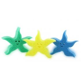 Eponge ludique étoile de mer - Vert